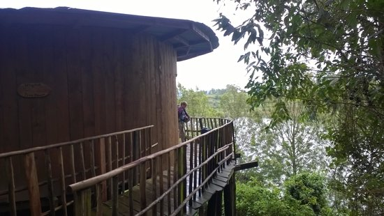 Bushara Island Camp: Treehouse with view