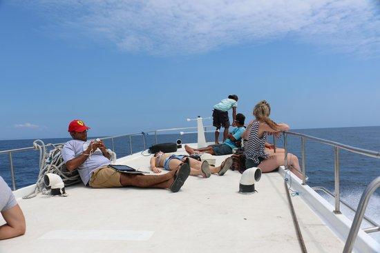 Ocean Star Express: 3
