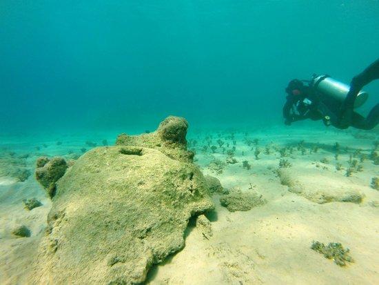 Million Dollar Bay : Million Dollar Point Photo: Santo SUPs
