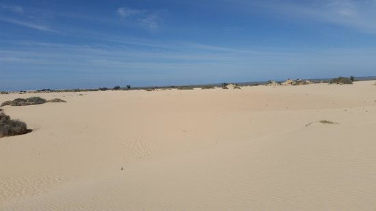 Mungo National Park: sand for miles