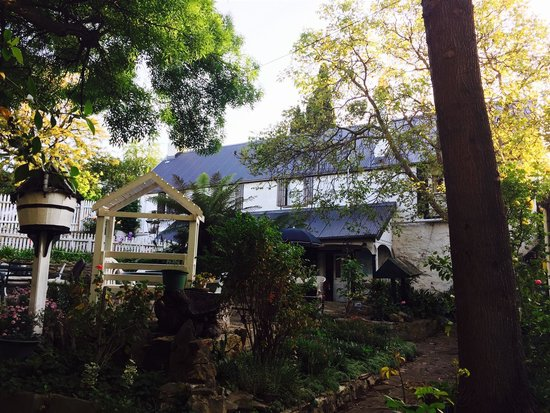 Old Colony Inn B&B: From the Garden Courtyard