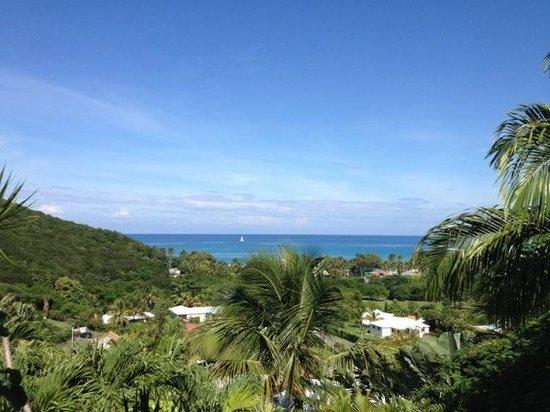 Caraibes Bonheur : vue sur mer 1