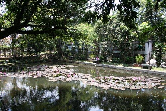 Seerosenteich Picture Of Villa Isola Bandung Tripadvisor