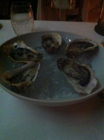 The Boathouse Wine & Grill: Ostras frescas