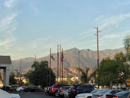 Great View Picture Of Hilton Garden Inn Arcadia Pasadena