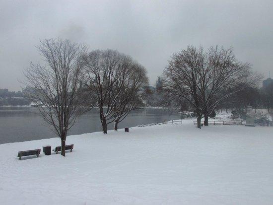 Sir John A. MacDonald Parkway: Vista del parque nevado en invierno.