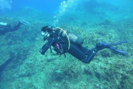 Dive Malta Dive Centre : Cirkewwa