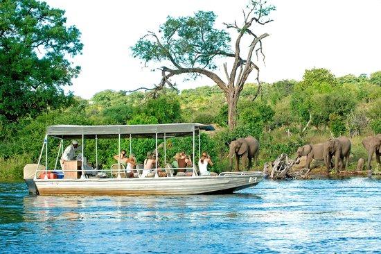 Sanctuary Chobe Chilwero - Chobe River