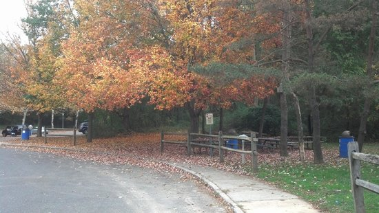 Glen Cove, NY: Autumn foliage at Garvies Point Museum