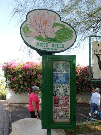 Jardín Acuático: Entrada a la cafeteria Risco Bello y de los jardines acuaticos