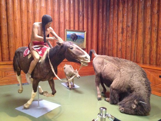Buffalo Nations Luxton Museum : Hunting scene of a native