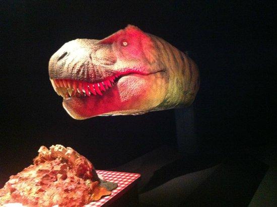 Museon: Honger!!