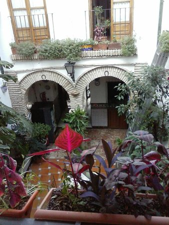 Pension los Arcos : the inner courtyard
