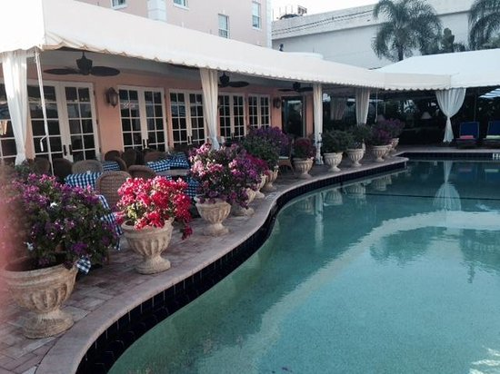 Colony Hotel: MAGNIFICENT POOL