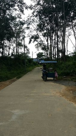 Phuket Airport 24/7 Hotel: Road left of the hostel