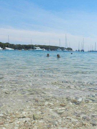 Palmizana: praia