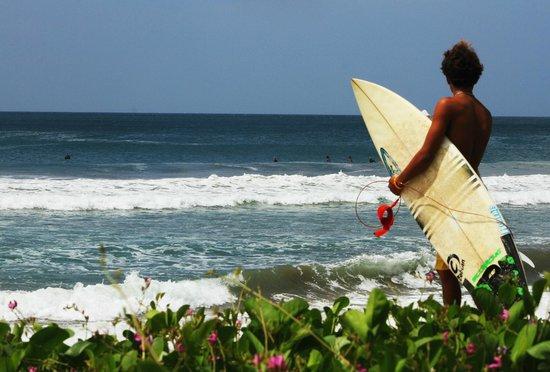Gigante Bay: Surf life