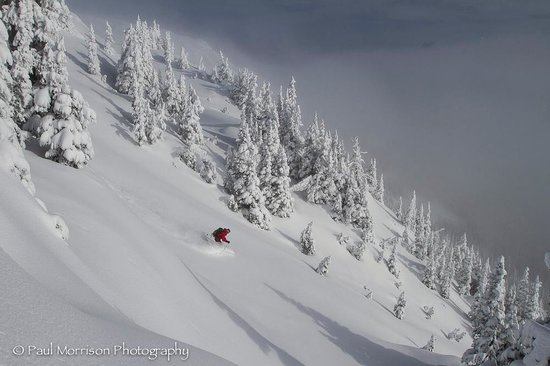 Backcountry Snowcats Ltd