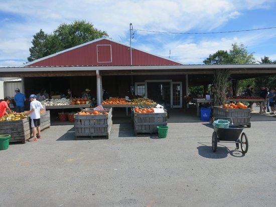 Poolesville, Maryland: Market too