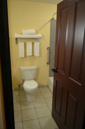 Holiday Inn Express Hotel & Suites Willcox: il bagno