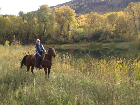 Smith Fork Ranch : Trail ride