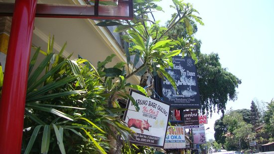 Tanah Semujan Ubud : ibu oka