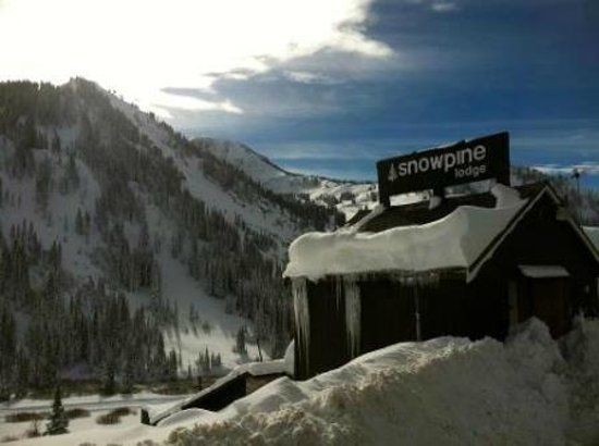 Snowpine Lodge: Ski-in, Ski-out!