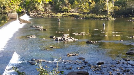Fly fishing at beaver 39 s bend state park picture of for Fly fishing oklahoma