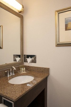 Holiday Inn Itasca (Woodfield Area): Guest Bathroom with New Elegant Vanity