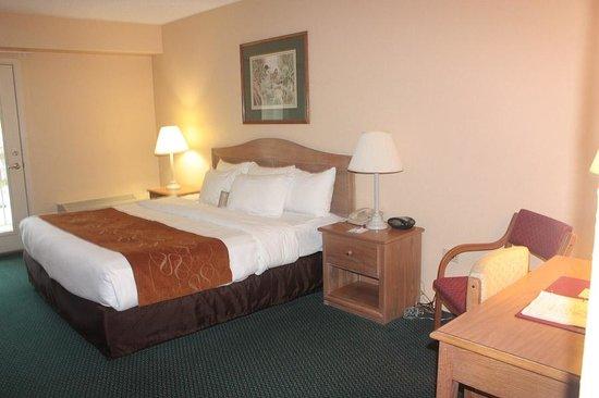 Comfort Suites: King size bed