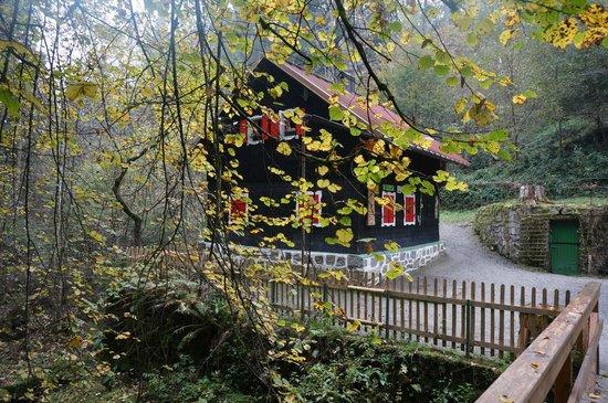 Beste Spielothek in Waldkirchen finden