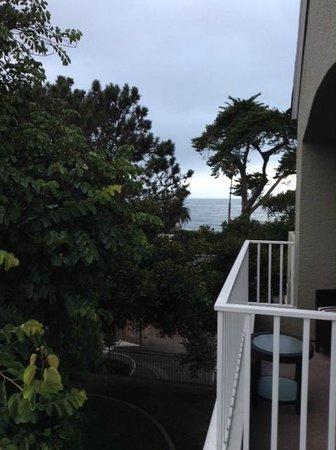 L'Auberge Del Mar: ocean view from room