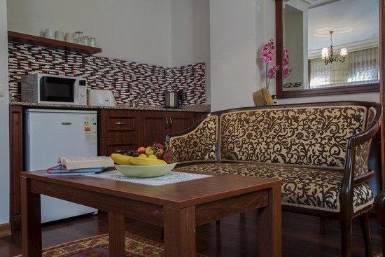 Tashkonak Studio Suites : Kitchenette in studio suite room