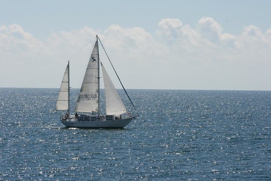 Sail The Daedalus Sailboat