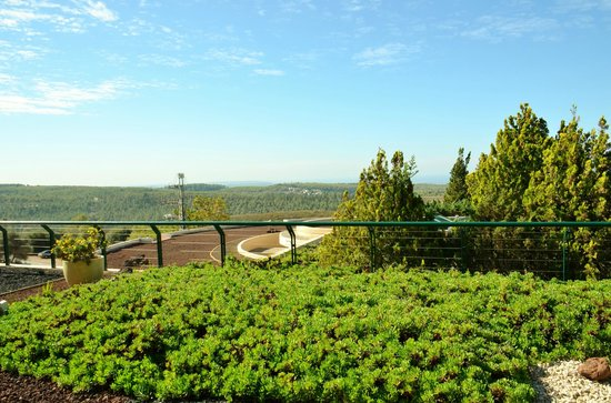 Carmel Forest Spa Resort by Isrotel Exclusive Collection : outdoor