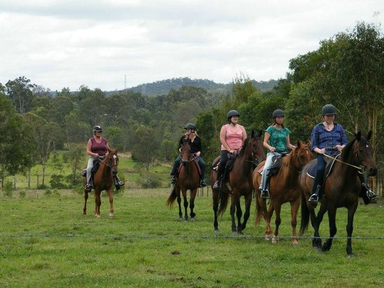 Tamborine, Australien: All levels catered for