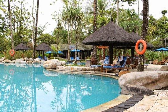 Taman Di Samping Kamar Picture Of Rimba Papua Hotel Timika