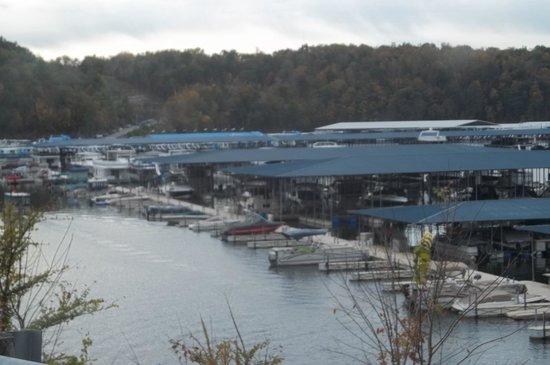 Jamestown Resort & Marina: A small portion of the marina