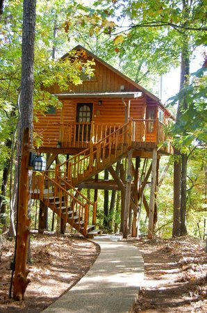 Bungalow picture of treehouse cottages eureka springs for Tree house cabins arkansas