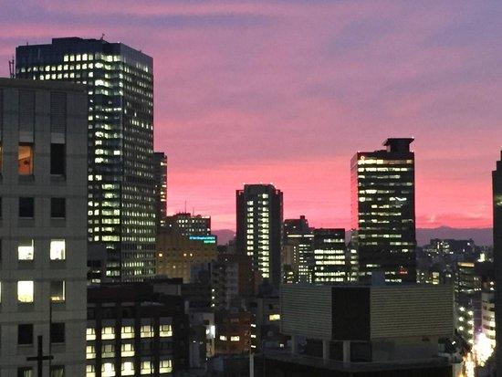 فندق نيوا طوكيو: Sunset from room 1418