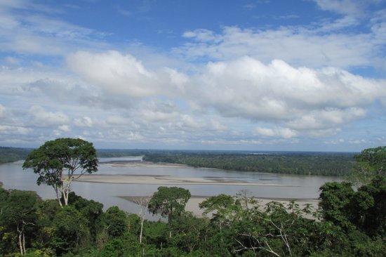 Manatee Amazon Explorer: Napa River from the Yasuni National Park Lookout