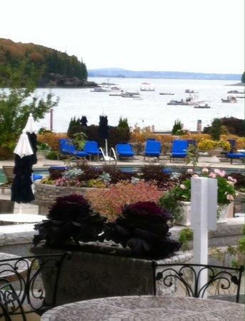 Harborside Hotel & Marina: Poolside view