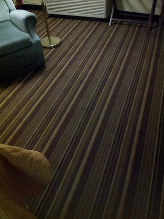 Americas Best Value Inn - Florence / Cincinnati: stained carpet