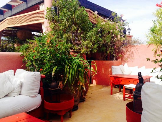 Riad La Terrasse des Oliviers : Rooftop terrace