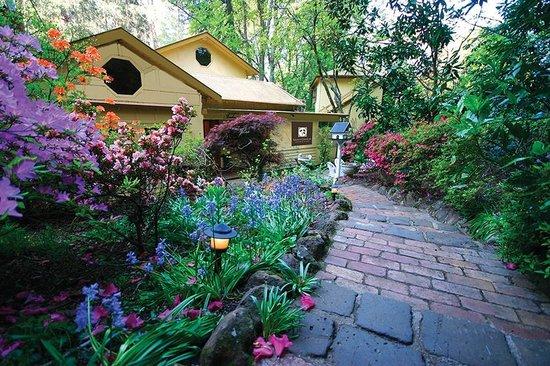 Linden Gardens Rainforest Retreat: Linden Gardens front garden