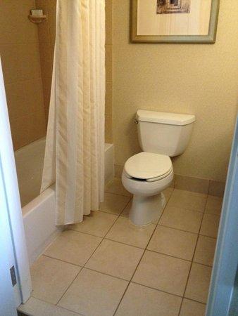 Bathroom, Hilton Garden Inn Annapolis