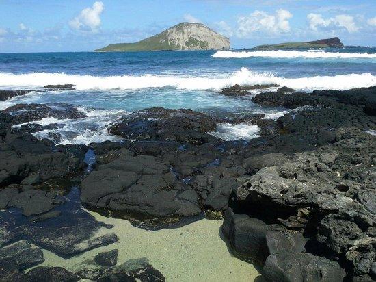 Makapu'u Beach: View of Rabbit Island