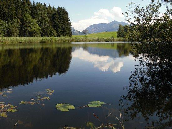 Ferienhof Margarethengut: Naturschutzgebiet Egelsee 5. min vom Margarethengut