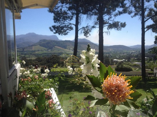 La Petite Ferme : The sweeping vistas from your table...