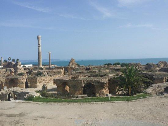 Carthage Dream Tours Reviews